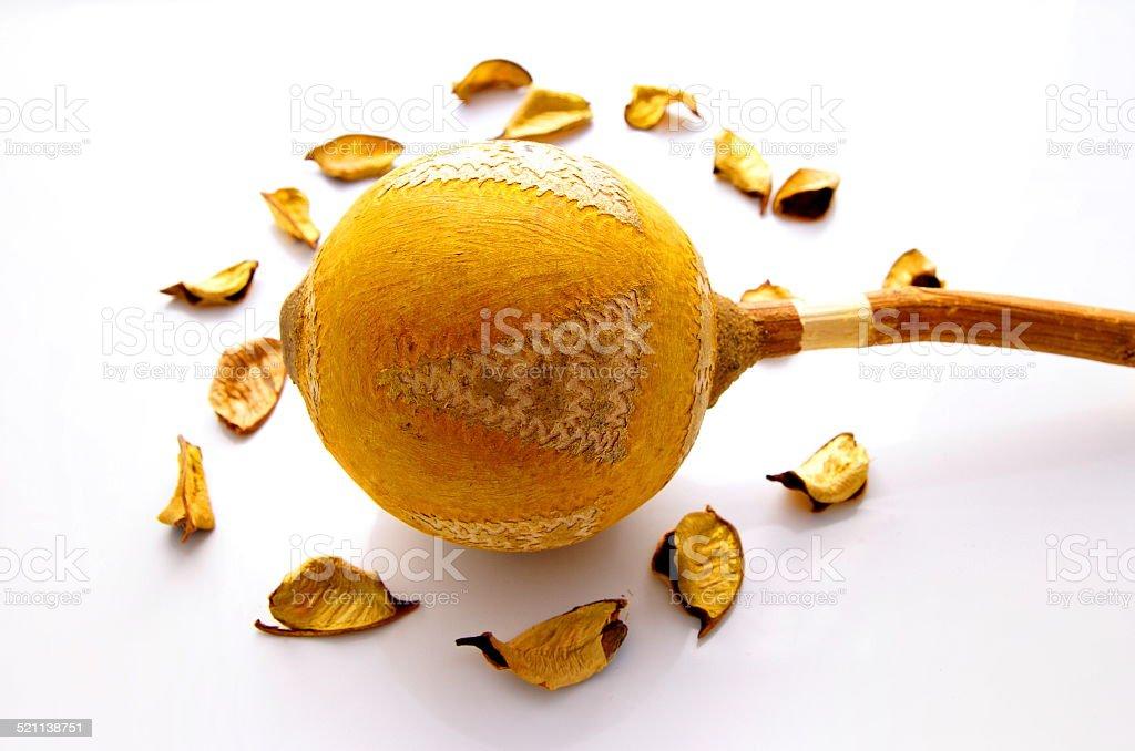 Natural orange decoration stock photo