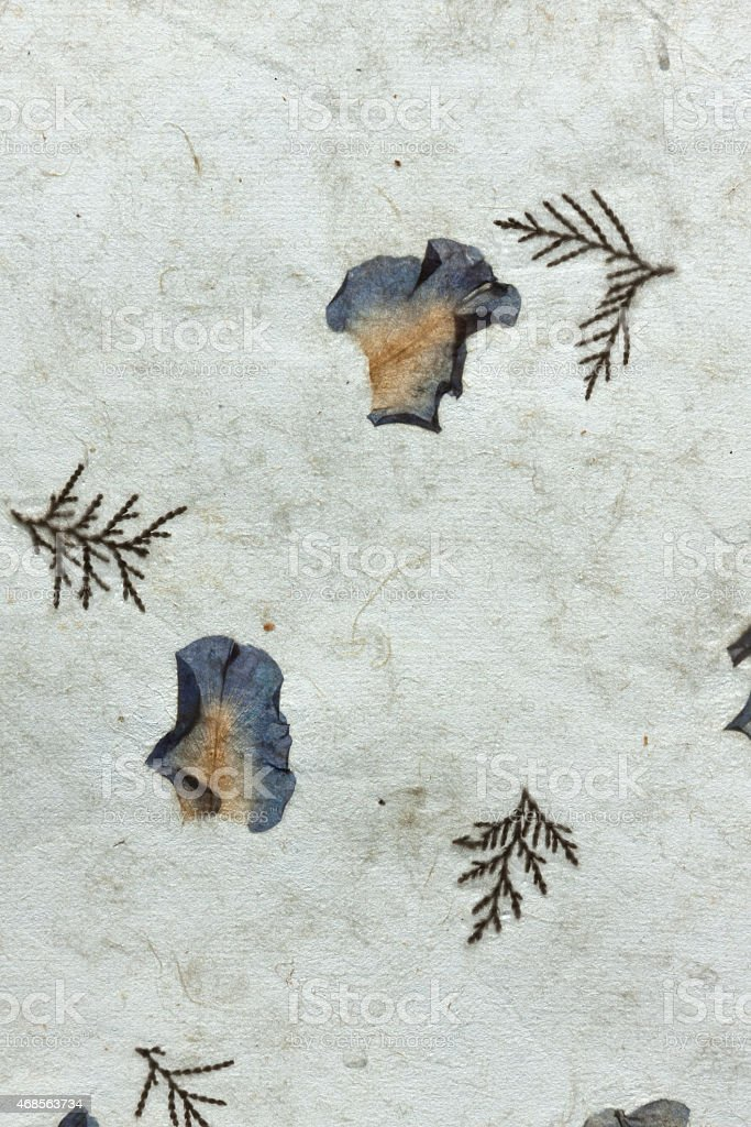 Natural paper with dry flowers pattern vertical royalty-free stock photo