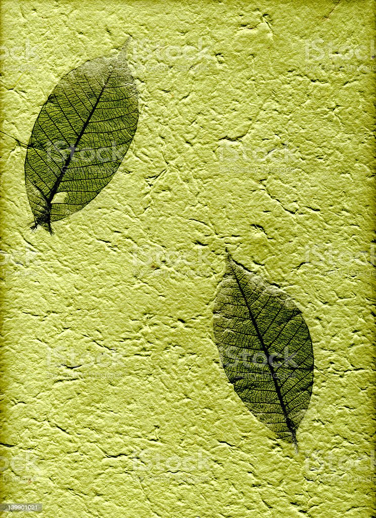 Natural paper with leaves, (hight resolution) royalty-free stock photo