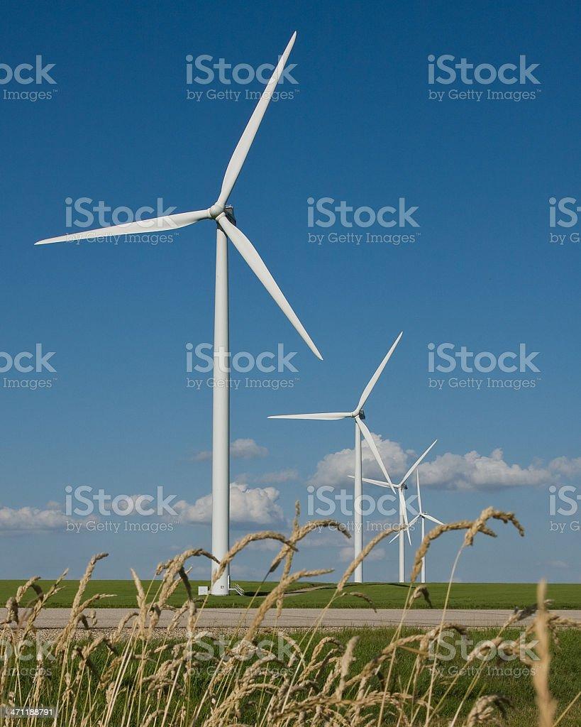 Natural Power royalty-free stock photo