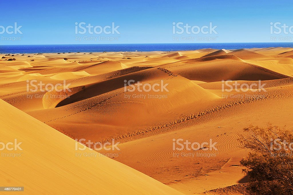 Natural Reserve of Dunes of Maspalomas, in Gran Canaria, Spain stock photo