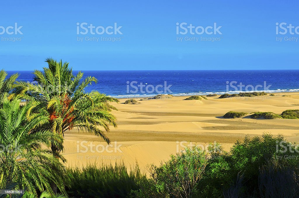 Natural Reserve of Maspalomas Dunes, in Gran Canaria stock photo