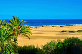 Natural Reserve of Maspalomas Dunes, in Gran Canaria