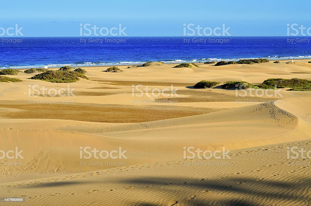 Natural Reserve  of Maspalomas, in Gran Canaria, Spain stock photo
