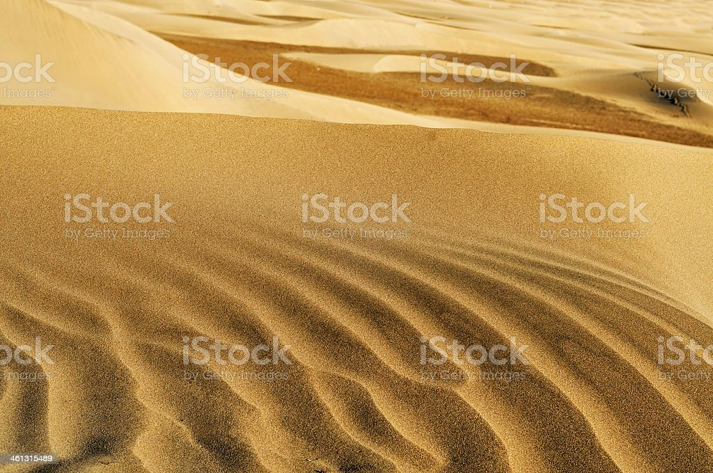 Natural Reserve  of Maspalomas stock photo
