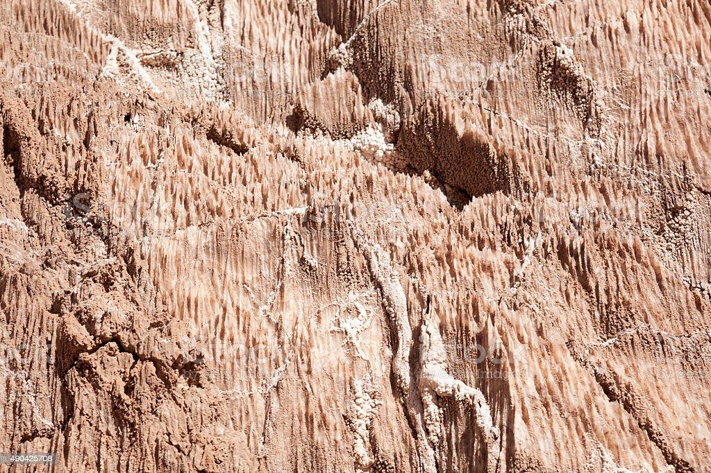 natural salt stock photo