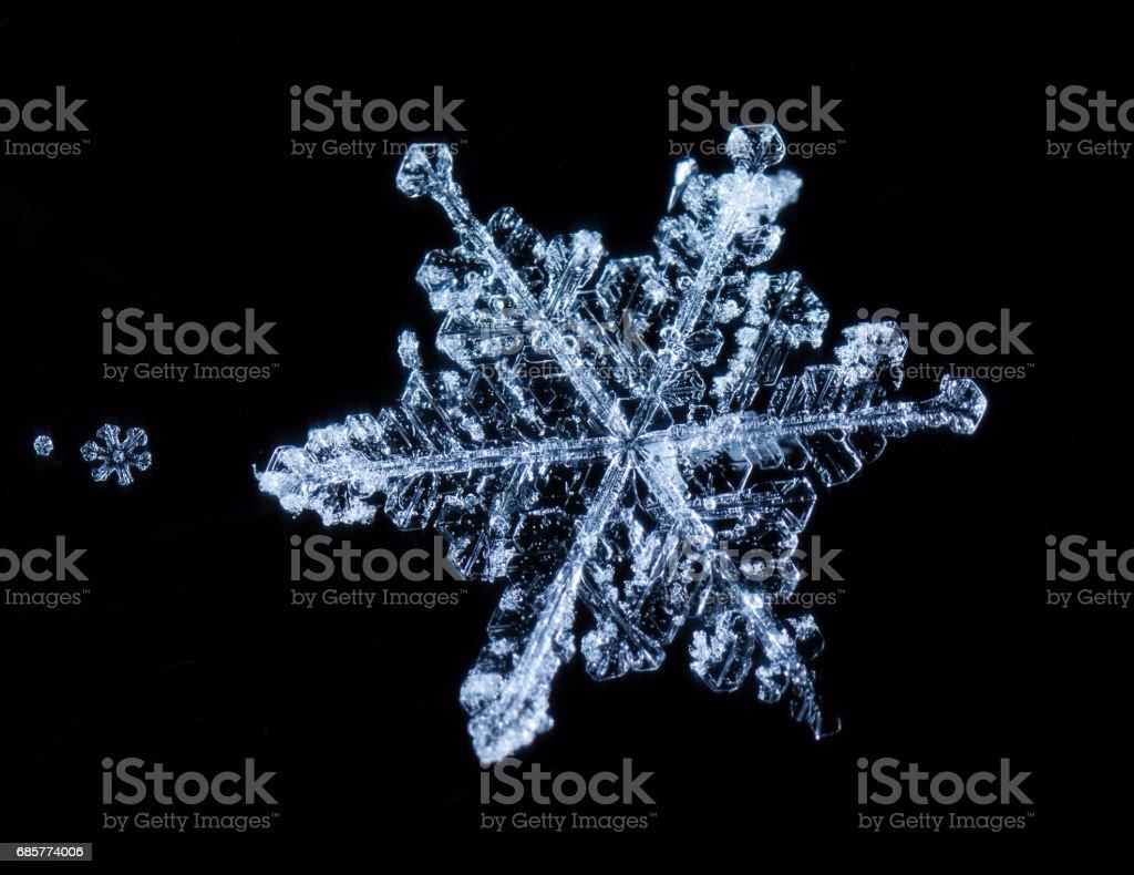 natural snowflakes, photo real snowflakes during a snowfall stock photo