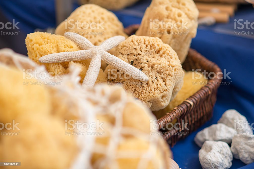 natural sponges in a basket with seastar stock photo