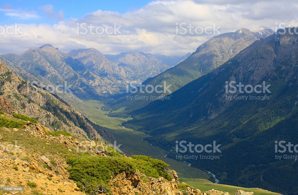 Natural summer landscape stock photo