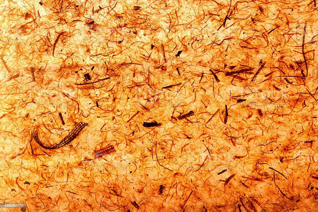 Natural texture royalty-free stock photo