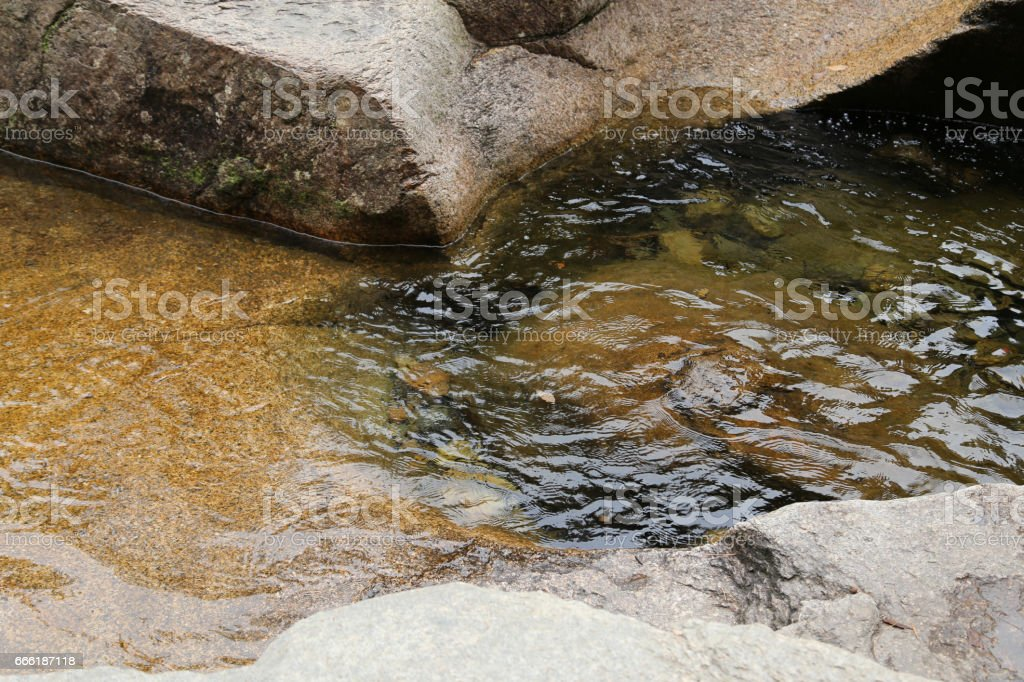 Natural textures and shapes stock photo