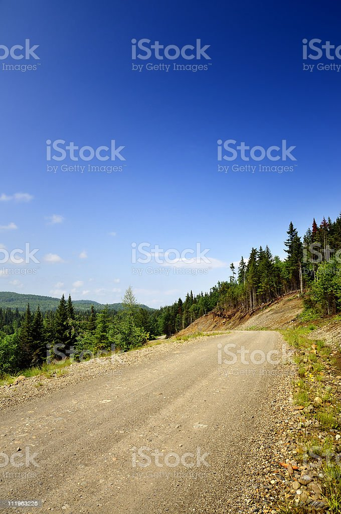 Natural Trailside Vibrant Beauty royalty-free stock photo