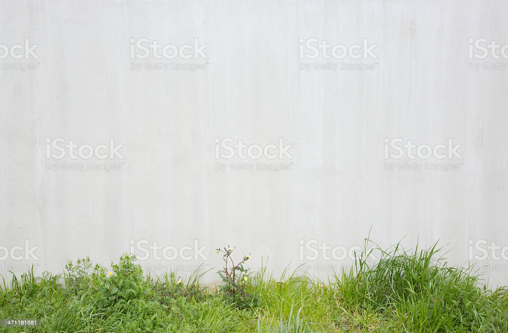 Natural verge royalty-free stock photo