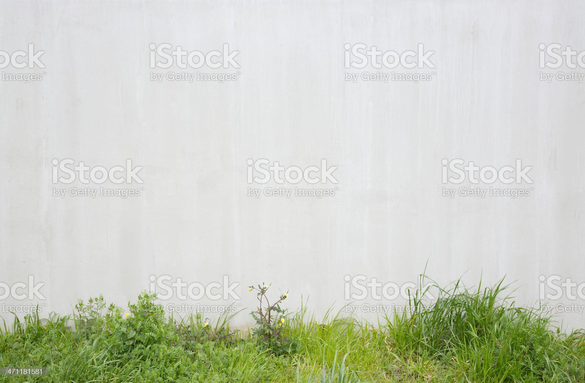 Natural verge royalty-free stock photo