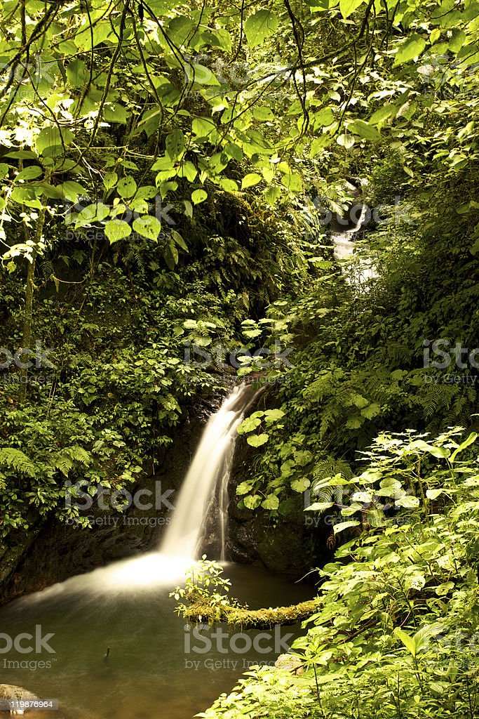 Natural Waterfall in Rain Forest  Central America royalty-free stock photo