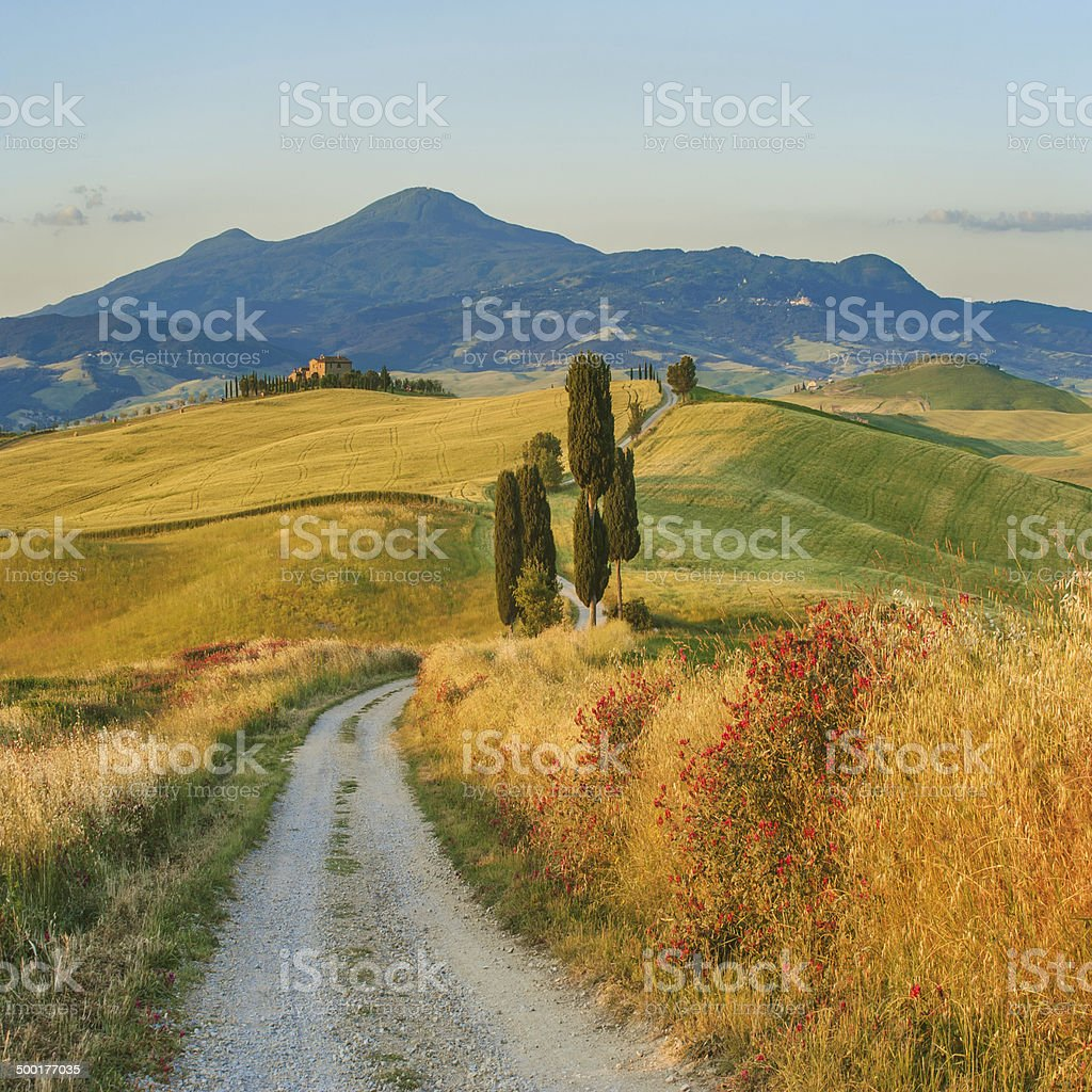 Natural white road in Tuscany, Italy stock photo