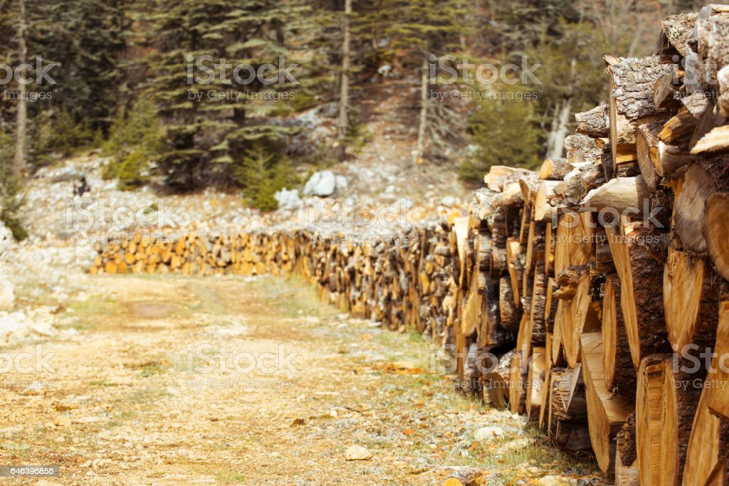 Natural wood background, wood, firewood stacked and ready for use. stock photo