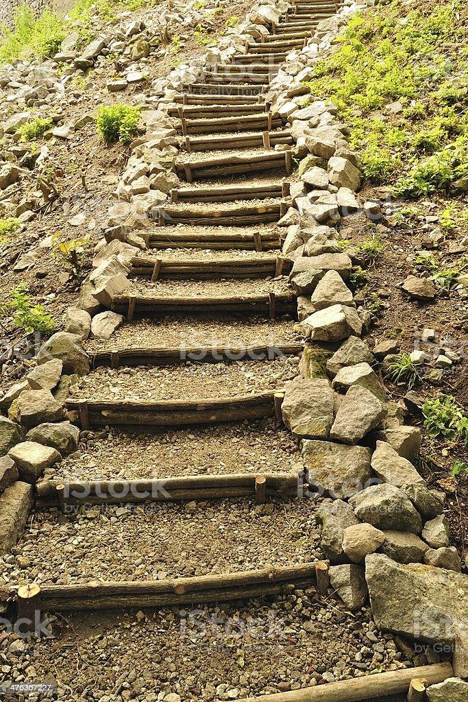 Naturalne drewniane schody z kamieni w Las zbiór zdjęć royalty-free