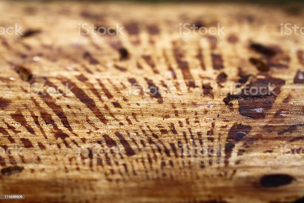 Natural wooden texture royalty-free stock photo