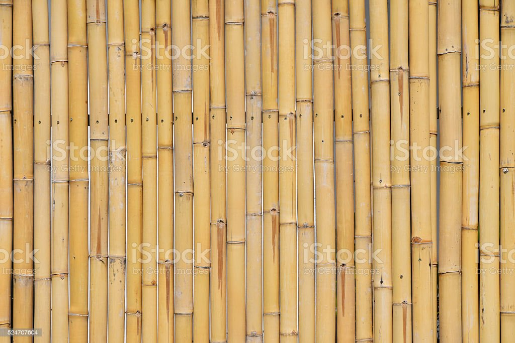 Natural yellow bamboo vertical bodies background royalty-free stock photo