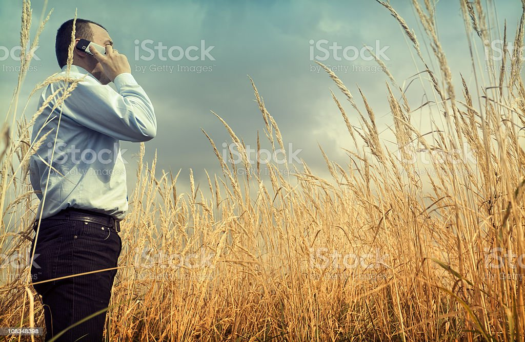 Naturally Business royalty-free stock photo