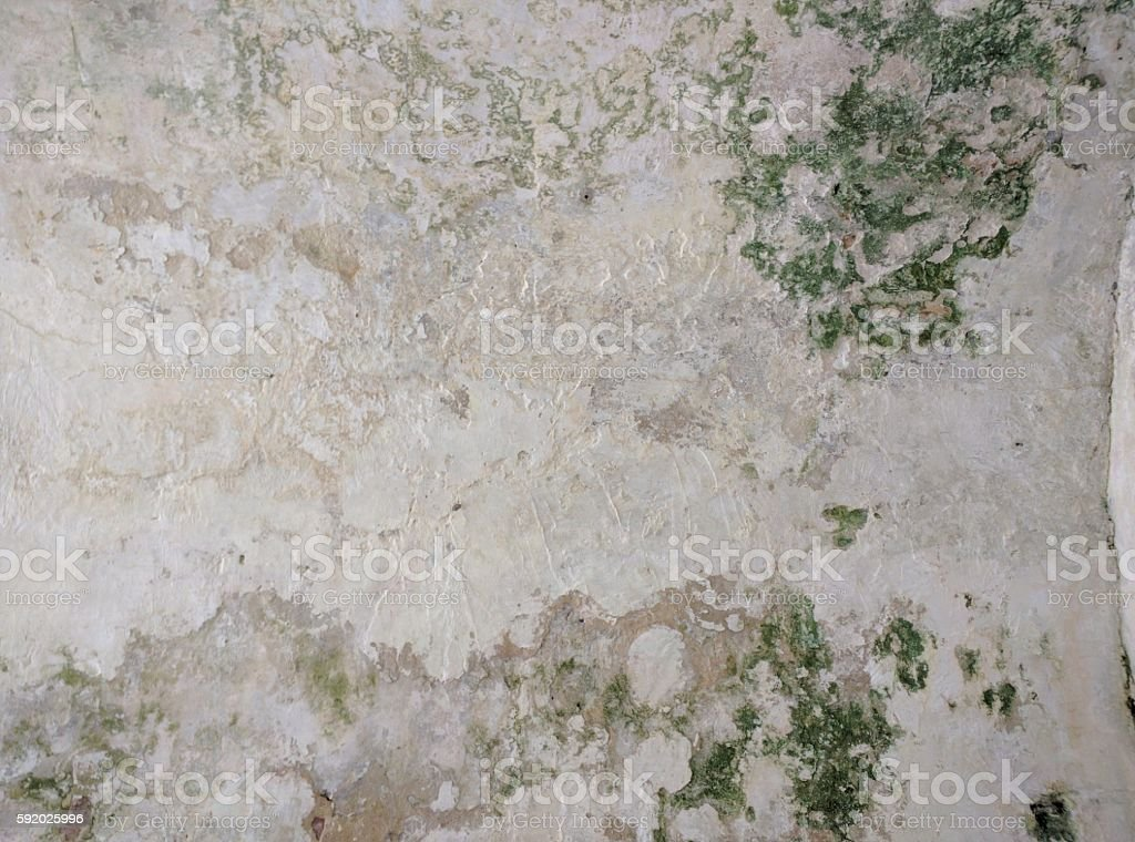 Naturally Distressed Fort Wall stock photo