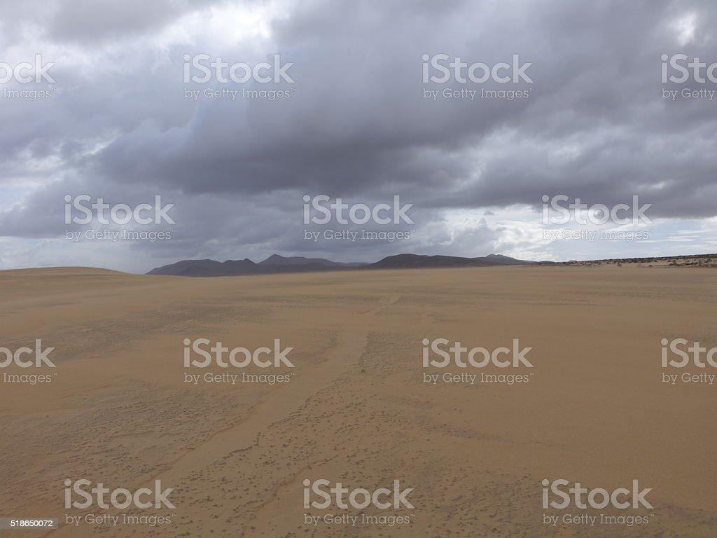 Natural-park, Corralejo beach, Fuerteventua, Canary Islands, Spa stock photo