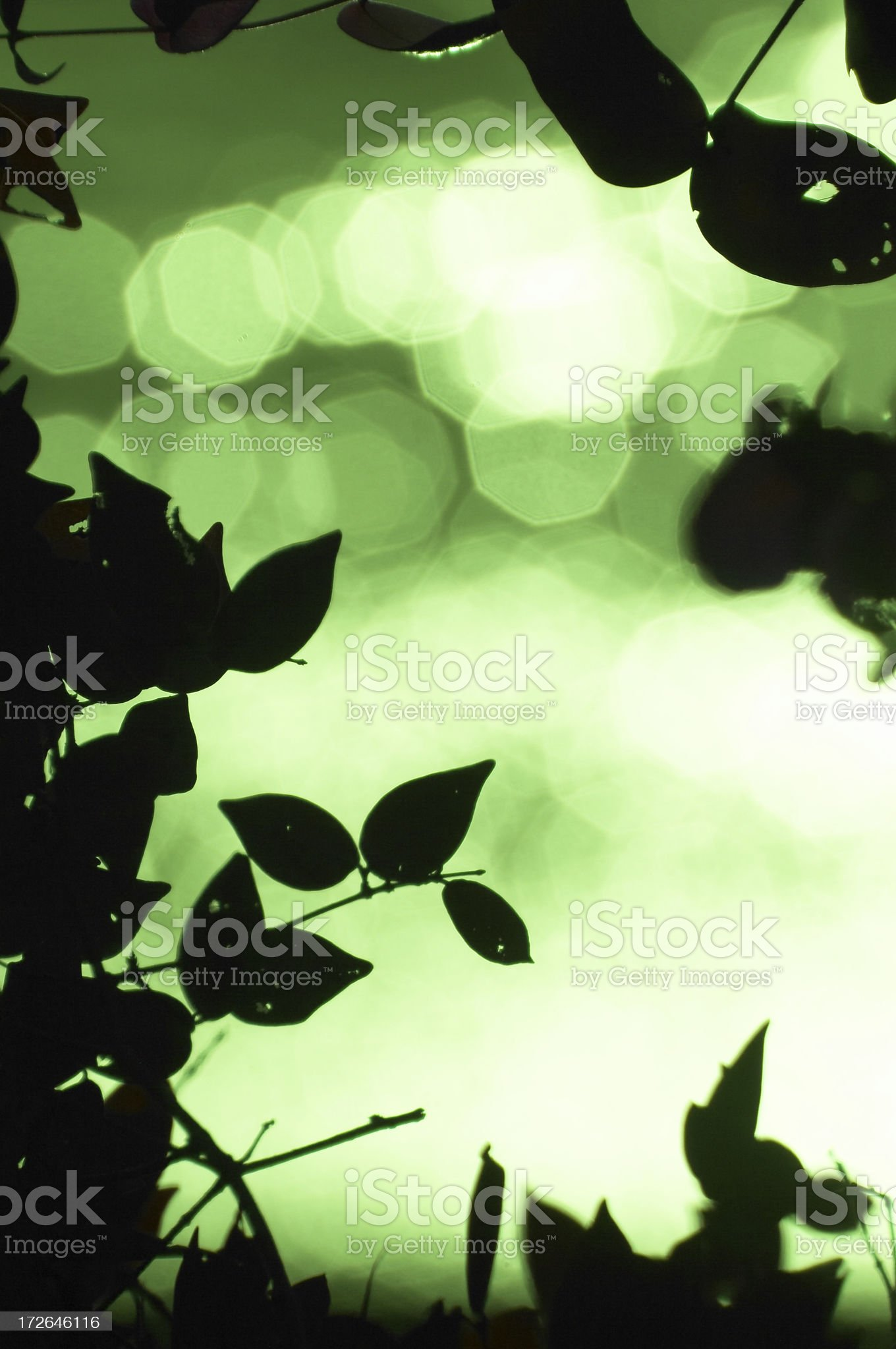 Nature & Relaxation royalty-free stock photo