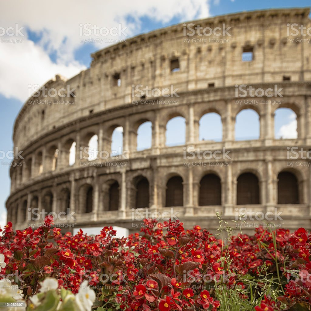 nature and coliseum royalty-free stock photo