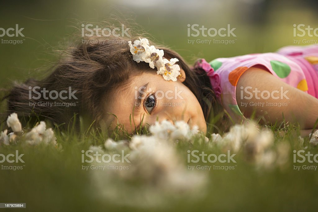 Nature and relaxation royalty-free stock photo