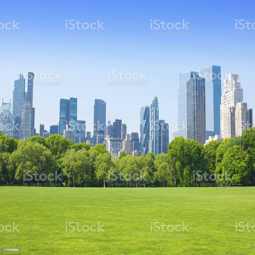 nature and the city stock photo