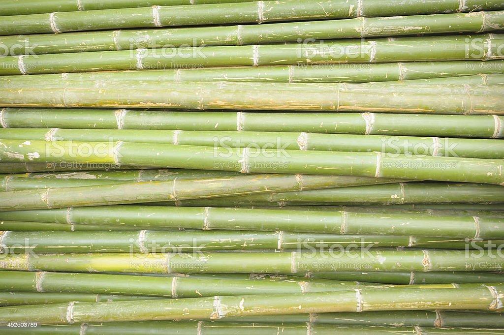 Nature bamboo background. stock photo
