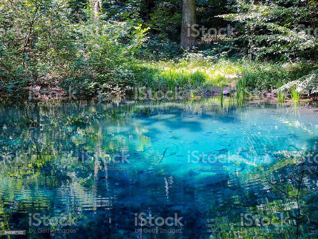 nature beauty turquoise crystal clear lake in romania ochiul bei lake stock photo