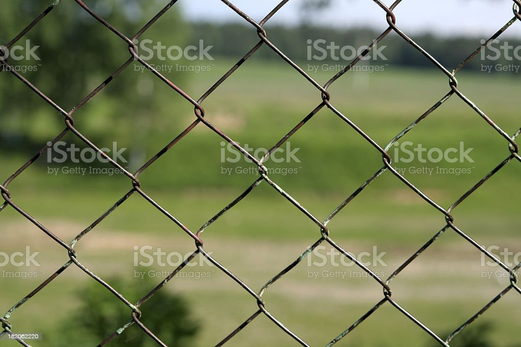 Nature behind the steel net royalty-free stock photo