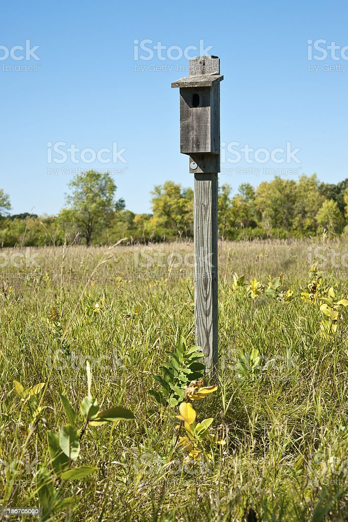 Nature: Bird House in Wild Meadow royalty-free stock photo