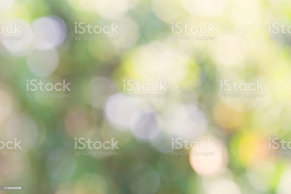 Nature bokeh background royalty-free stock photo