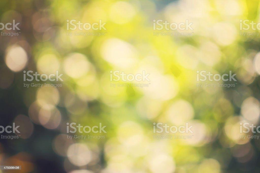 Nature bokeh background royalty-free stock photo