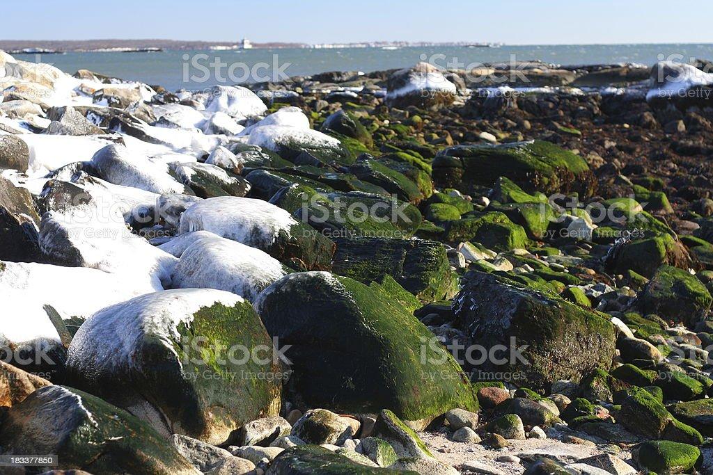 Nature: Coast royalty-free stock photo