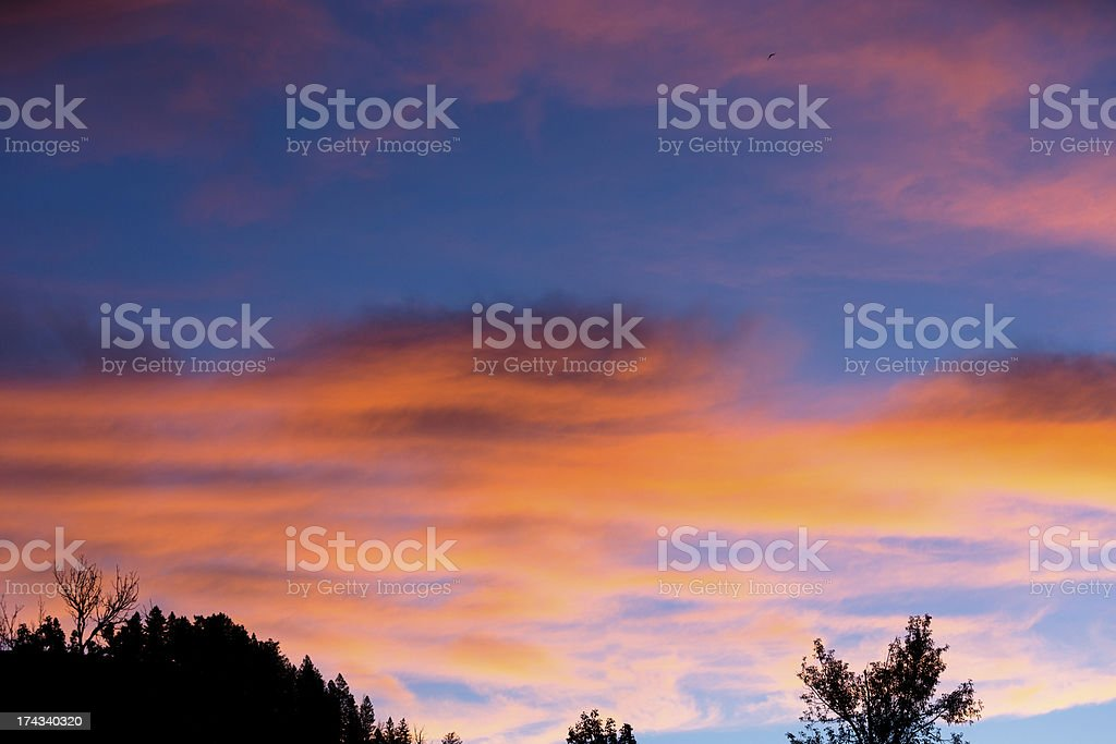 Nature: Electric orange sunrise above the trees. Beautiful sky. stock photo