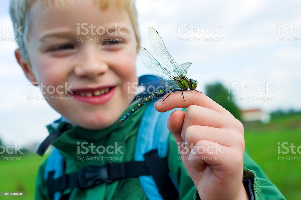 nature experience royalty-free stock photo