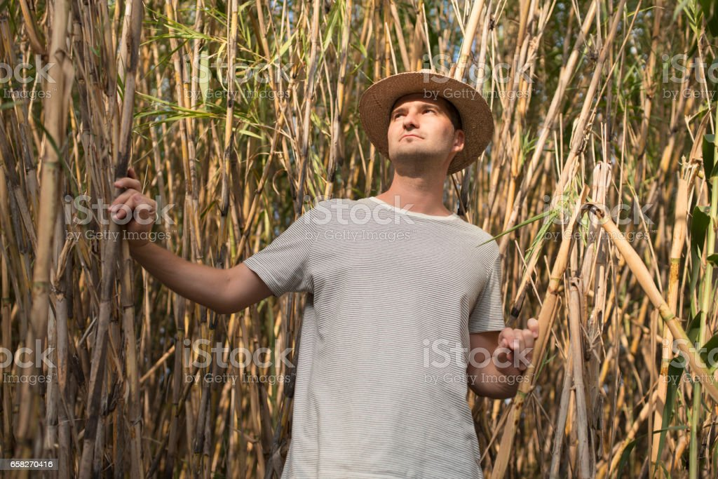 Nature Explorer stock photo