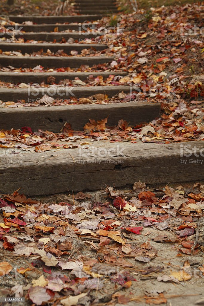 Stairway covered with fallen leaves stock photo