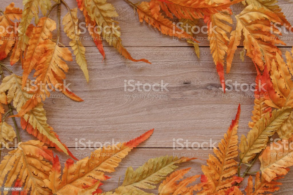 Nature garden plant Autumn red fern leaf retro wood vintage plate table blank template background stock photo