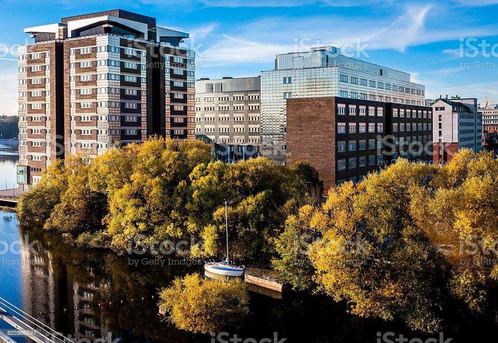 Nature in cityscape stock photo