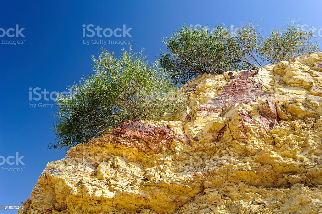 Nature in Jerash, Jordad stock photo