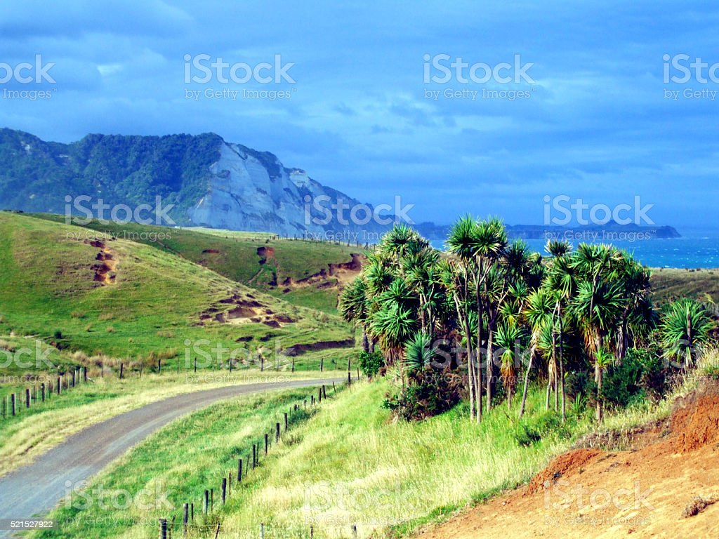 Nature in New Plymouth, New Zealand stock photo