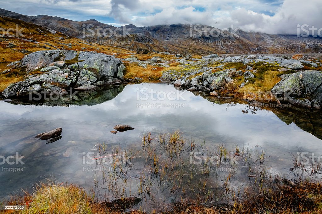 Nature in Norway, Senja island stock photo