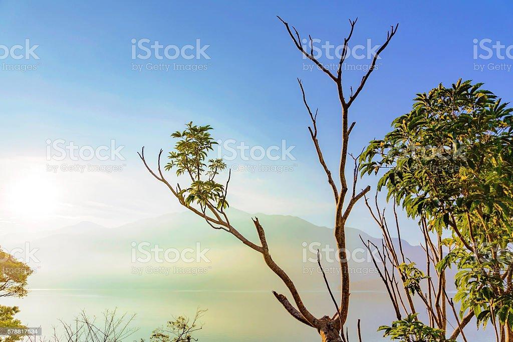 Nature in Sun Moon Lake stock photo
