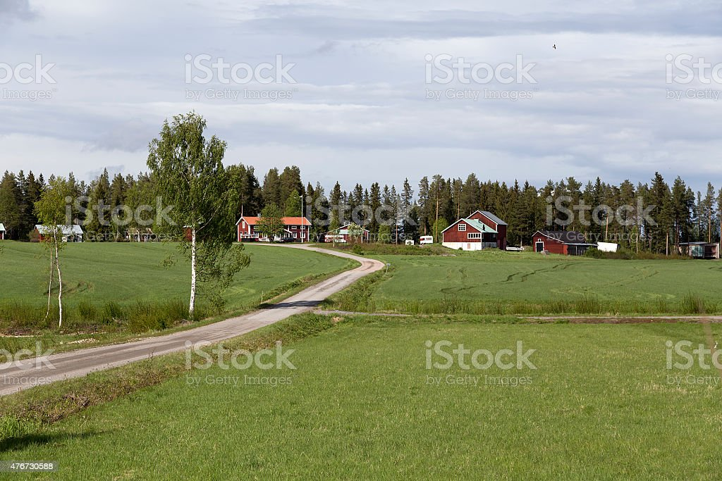 Nature in the countryside royalty-free stock photo