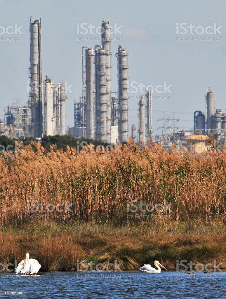 Nature & Industry royalty-free stock photo